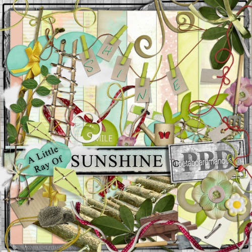 pboar_a-little-ray-of-sunshine